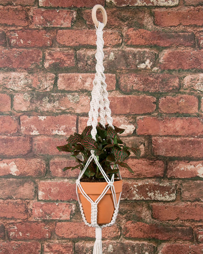 Make-ramé™ Plant Hanger Kit - Twists