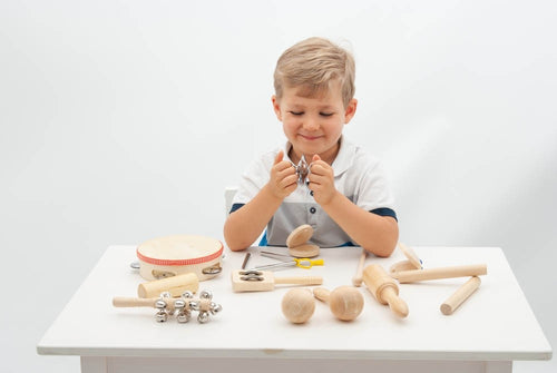 Percussion Set, motor and cognitive skills, for disabled children.