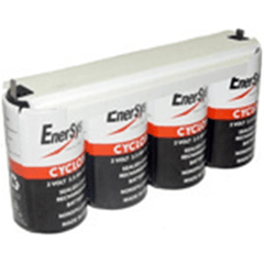 Enersys Cyclon 0810-0104 Battery - 8V/2.5AH