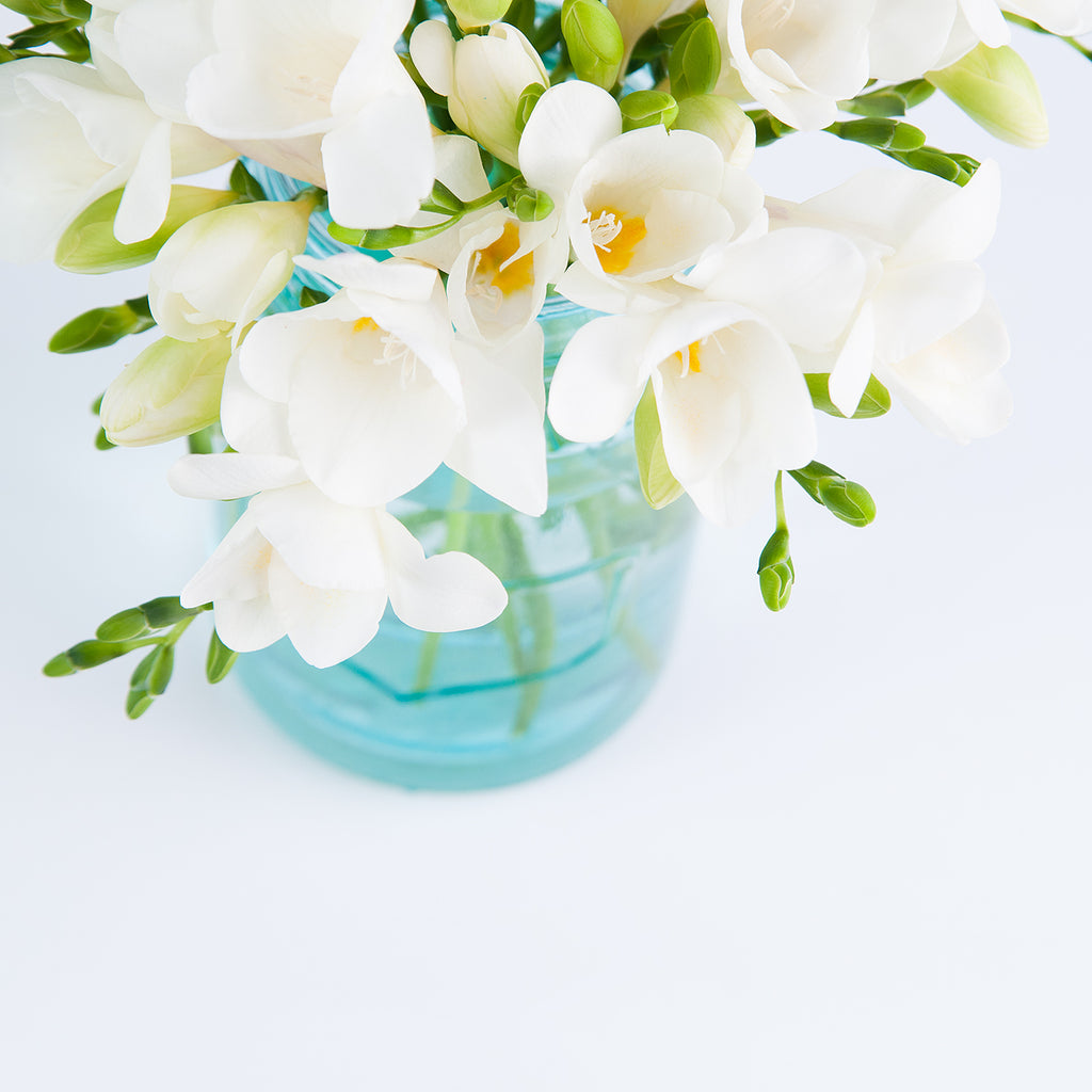 styled floral stock photo of white fressia flowers