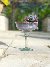 Lavender Infused Champagne and Spirits Enhancer - 750 ml
