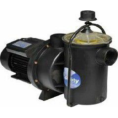 Quality swimming pool pump | Make: Quality 220V Select size: 0.45 / 0.6 / 0.75 / 1.1 / 1.5kW - Swemgat