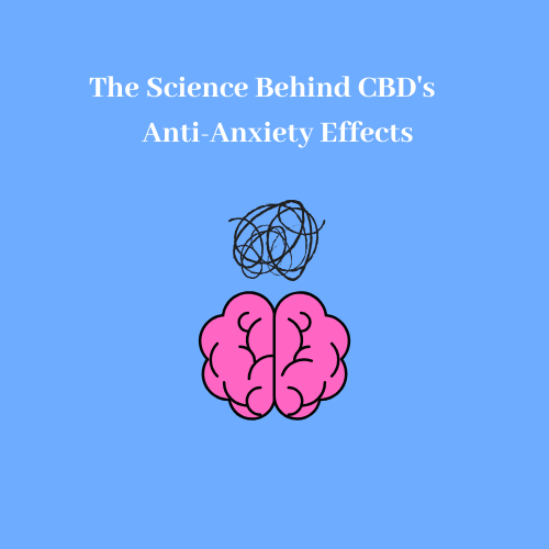 The Science Behind CBD's Anti-Anxiety Effects