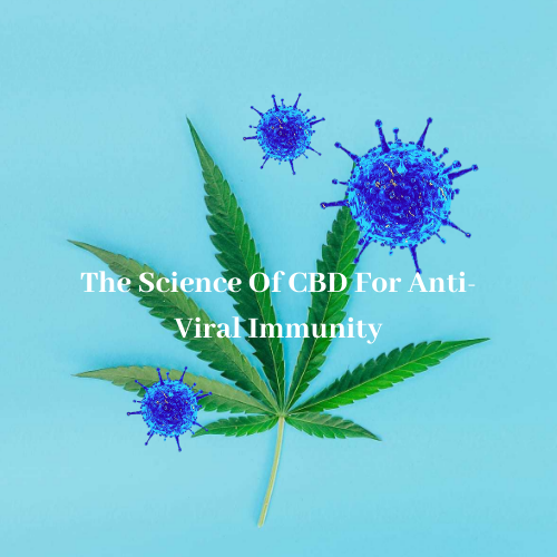 The Science of CBD for Anti-Viral Immunity
