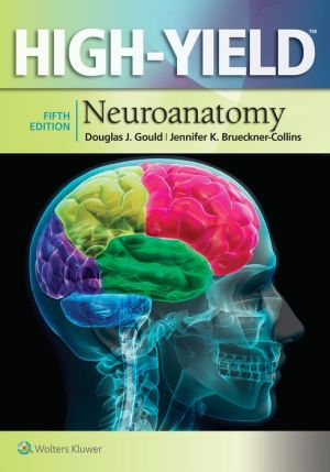 High-Yield(TM) Neuroanatomy, 5e