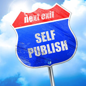 DISCOVER THE AUTHOR WITHIN—1/2 Hr. Publishing Consult by Deborah S. Nelson