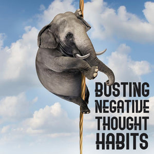 Busting Negative Thought Habits--This image shows how you can break out of negativity. The image is an elephant climbing a rope. With this 10 part mini-course you will learn the power of changing your negative thought habits. Course by Book Coach Deborah S Nelson