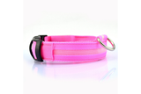 Lighted LED Dog Collar! Stay Visible With Style!