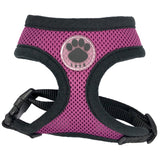 Comfortable and Colorful Harness! 50% OFF!  Our Most Popular Harness!