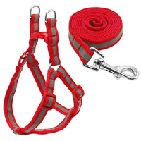 Reflective Harness and Leash Set