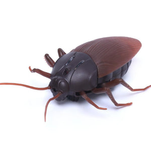 High Simulation Animal Cockroach Infrared Remote Control Kids Toy Gift - ourkids-shop