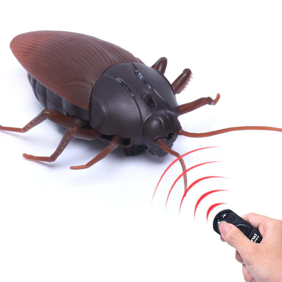 High Simulation Animal Cockroach Infrared Remote Control Kids Toy Gift - OurKids.Shop