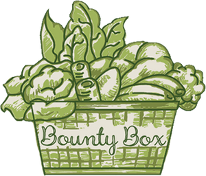 organic food box wellington, fruit boxes delivered, fruit and vegetable delivery, organic fruit & vegetables, fruit and  vegetables online, fruit and veg box delivery, veggie box, organic fruit and vegetables online, organic food, organic  vegetable box,