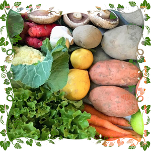 Organic Just Vege Bounty Box - $30