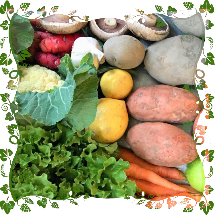 Just Vege Bounty Box - $30
