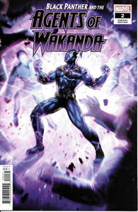 Black Panther and Agents of Wakanda #2 - Lan Medina Variant Cover