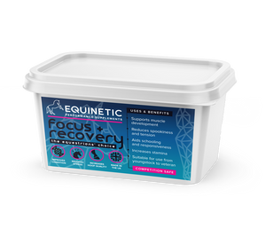 Equinetic Focus and recovery supplement