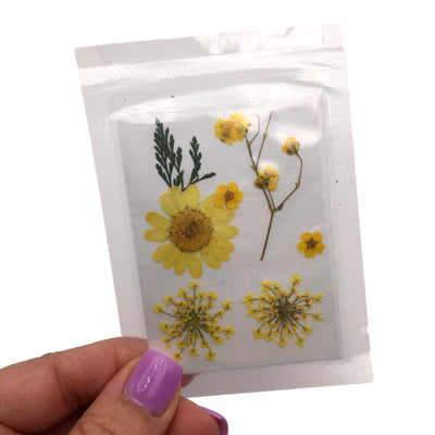 Small Yellow Pressed Dry Flowers, Dried Flat Flower Packs, Pressed Flowers For Resin Crafts