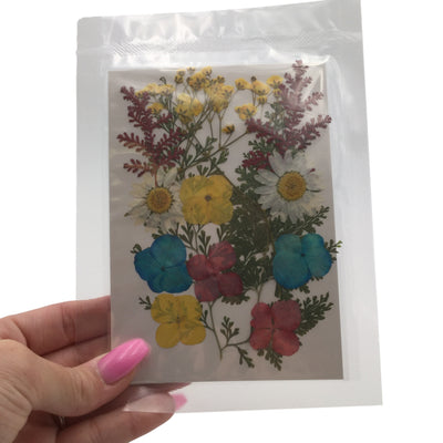 Large Pressed Dry Flowers, Dried Flat Flower Packs, Pressed Flowers For Resin Crafts - 2882