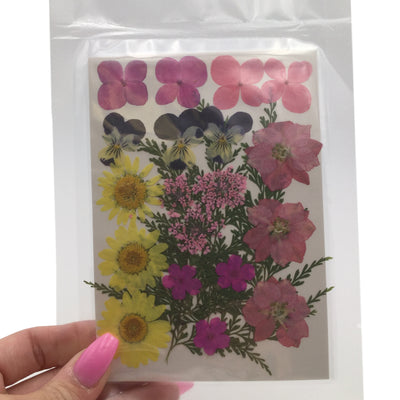 Large Pressed Dry Flowers, Dried Flat Flower Packs, Pressed Flowers For Resin Crafts - 2874