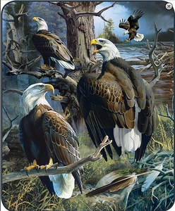 """Eagle collage"" Officially Licensed Regal Comfort® Faux Fur™ Queen Size Blanket"