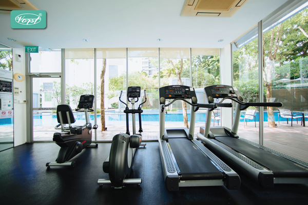 Room with treadmill and elliptical