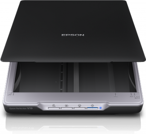 Epson Perfection V19 Photo and Document Scanner (B11B231401)