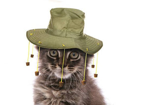 cat in Australia Day cork hat