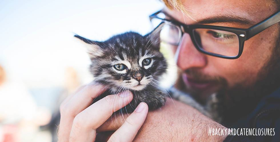 man gently holding kitten
