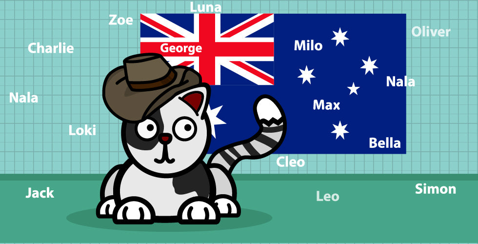 Popular names of Australian cats
