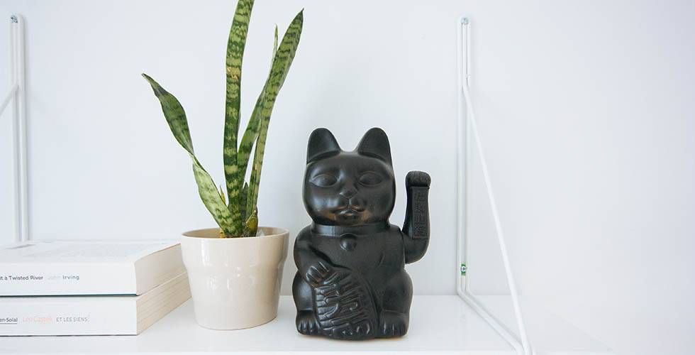cat maneki-neko statue with snake plant mother in laws tongue