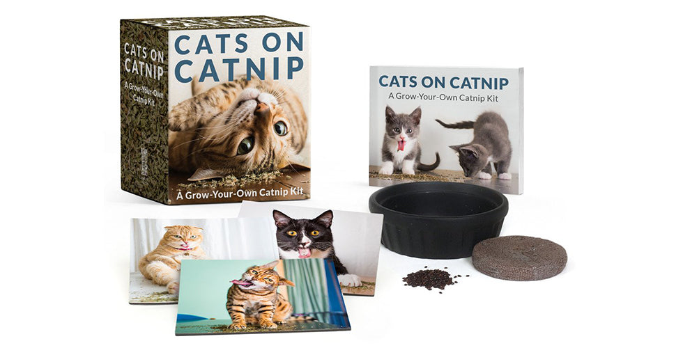 christmas gift guide grow your own catnip kit