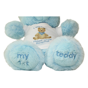 I Was Born at Mount Sinai Teddy Bear (Blue)