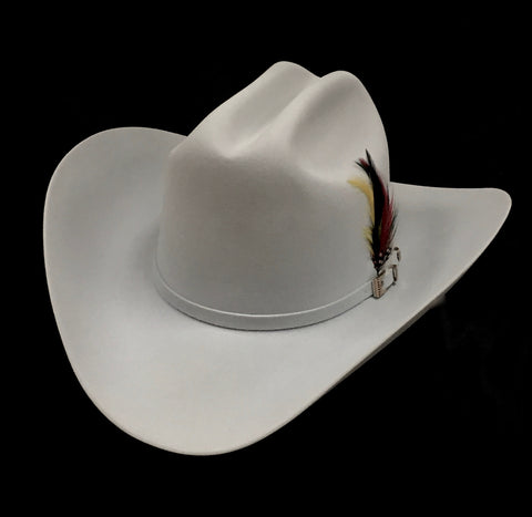 David's 100X Platinum fur felt cowboy hat
