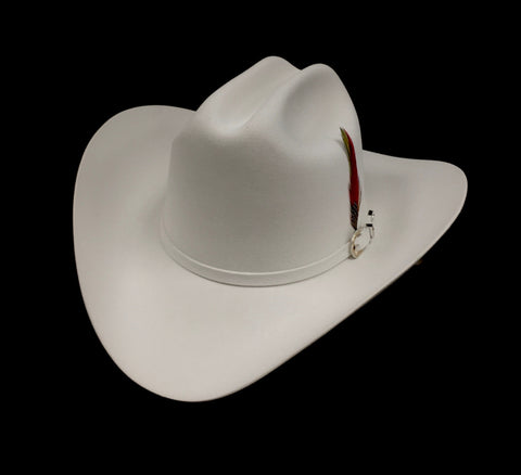 David's 30X Platinum fur felt cowboy hat