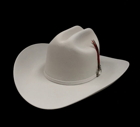 David's 5X Platinum fur felt cowboy hat