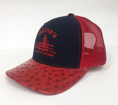 Navy/Red cap with full quill red cc ostrich visor