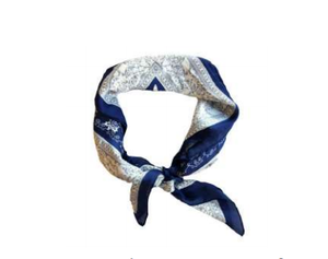 Headbands of Hope - Headscarf Navy Paisley Princess