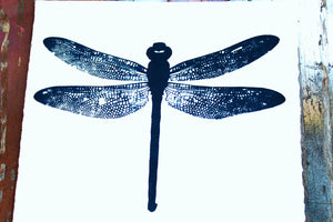 Dragonfly No. 1