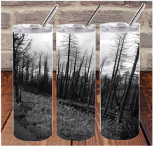 Scorched Trees Digital Design