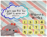 Cozy Plush Baby Milestone Blanket - God Is With Me ~Isaiah 41:10~ (Design: Elephant)