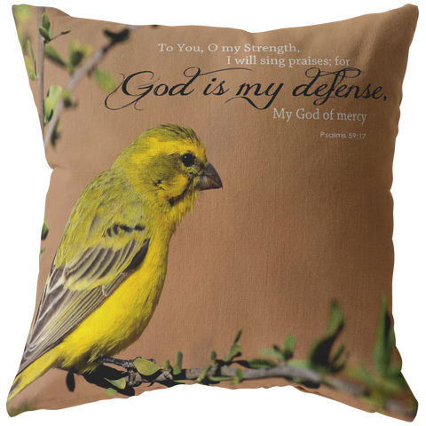 God Is My Defense, My God Of Mercy ~Psalms 59:17~ - Meditate Healing Christian Store