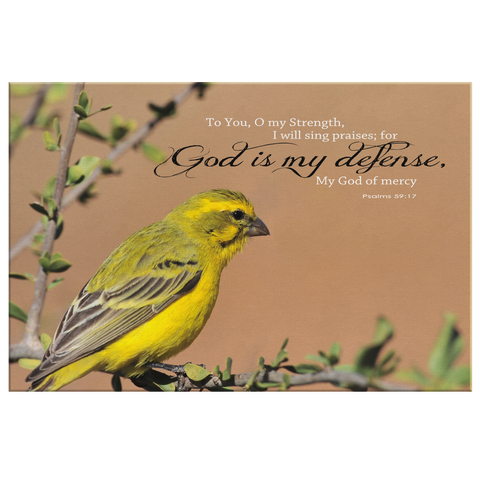 God Is My Defense, My God Of Mercy ~Psalm 59:17~ - Meditate Healing Christian Store