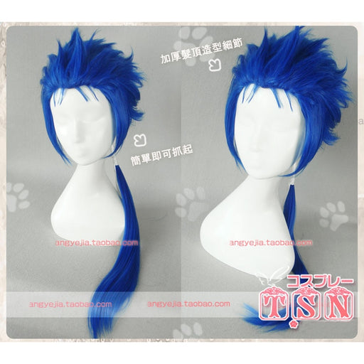 Cu Chulainn Blue Long Wig Ponytail Fate Grand Order Berserker Prototype Stay Night