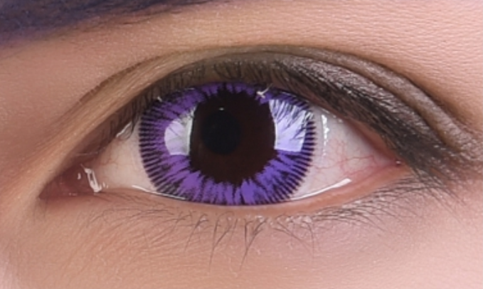 Free Eternal Summer Violet Lens