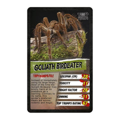 Spiders Top Trumps - Winning Moves UK