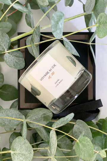 Single Votive Gift Box in Capri: Lime Basil Candle