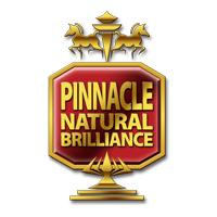 pinnacle car care products carzilla canada logo