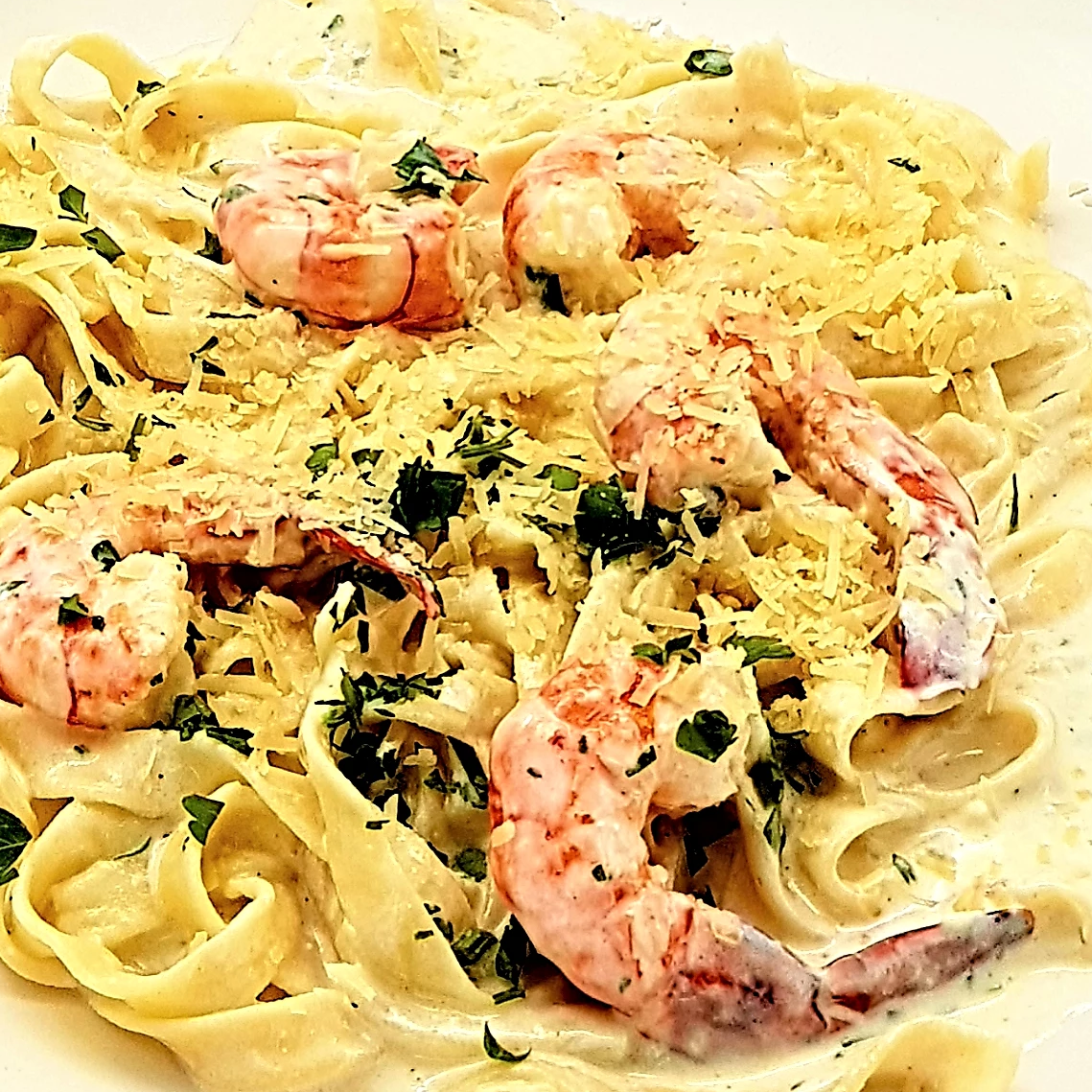 Familychef 20 ' Fresh Fettuccine Alfredo With Shrimp plate