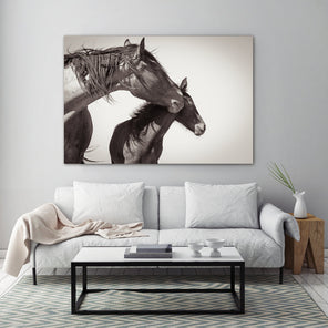 A black & white photograph of a horse and her foal; Displayed over a white couch on a white wall. To the right of the couch is a wooden side table with a white vases. Directly in front of the couch is a white coffee table with black legs.